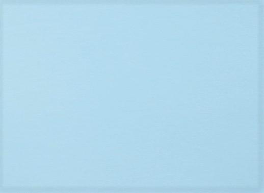 Organic Cotton Baumwolljersey uni light blue (016)