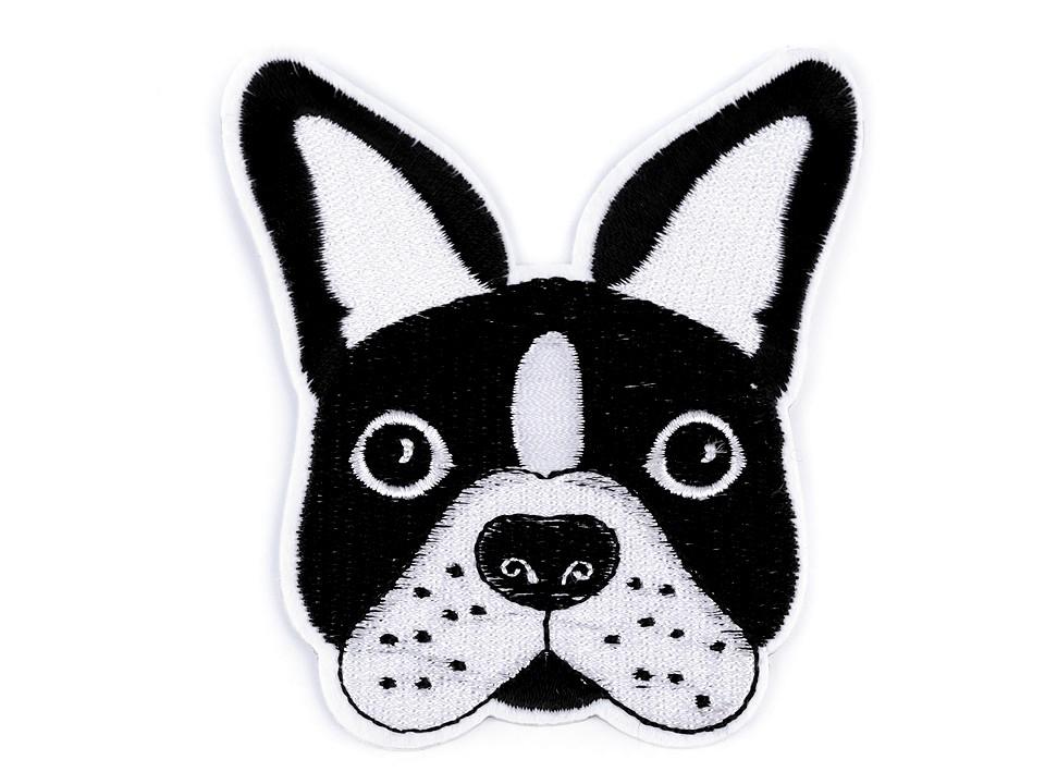 Applikation mit französischer Bulldogge