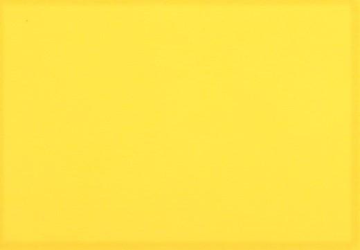 Organic Cotton Bündchenstoff uni gelb (028)