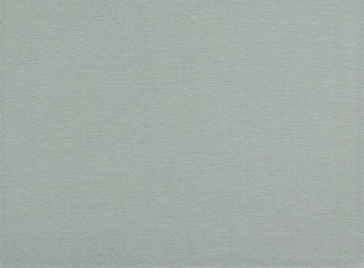 Organic Cotton Baumwolljersey uni frost grey (035)