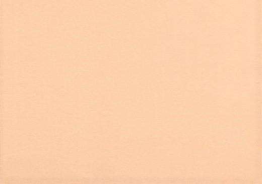 Organic Cotton Bündchenstoff uni salmon (011)